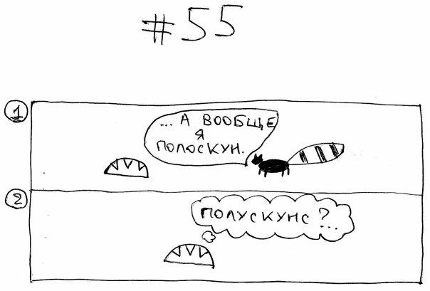 Енот выпуск 56
